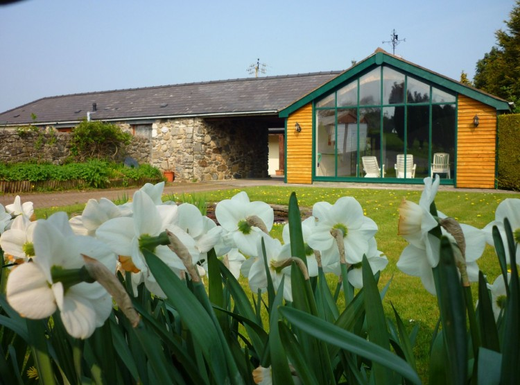 Laurel Cottage At Eglwysbach