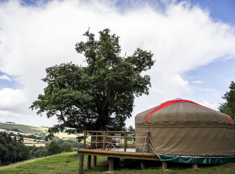 Buffalo Springfield Yurt At Walcot Hall