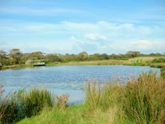 Devon Houseboats, Blagdon Water