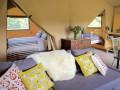 Firebug Safari Tent
