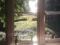 Hornstone Cottage At Westley Farm