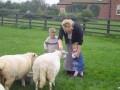 Our grandson feeding the sheep