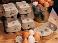 Eggs to buy