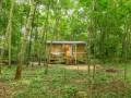 Woodland Retreat Shepherd's Hut At Brandeston