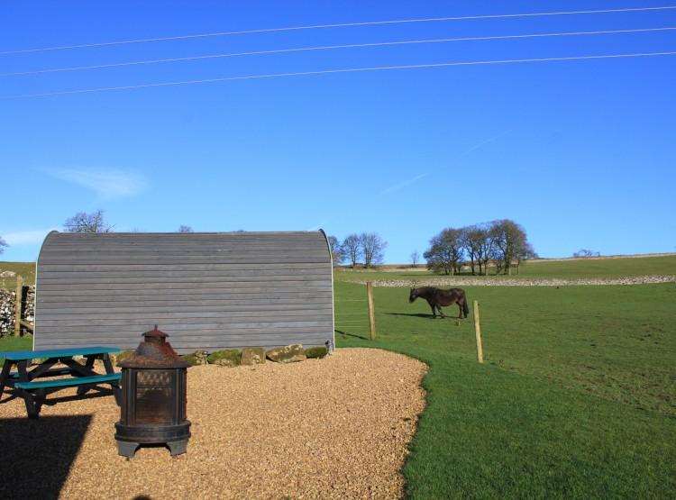 Swallow Pod  At Hoe Grange Holidays