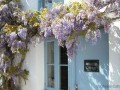Wisteria Cottage At Croyde