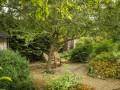 Yew Tree Cottage At Eastington