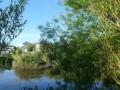Fallow At Pollaughan