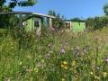 The Tregothnan Shepherds Hut In Coombe