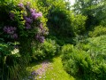 Second garden terrace