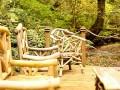 Honeypot At Old Lanwarnick