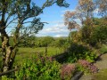 View from garden.